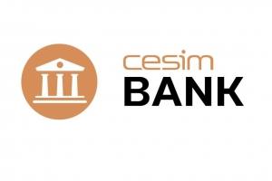 银行及金融行业管理模拟